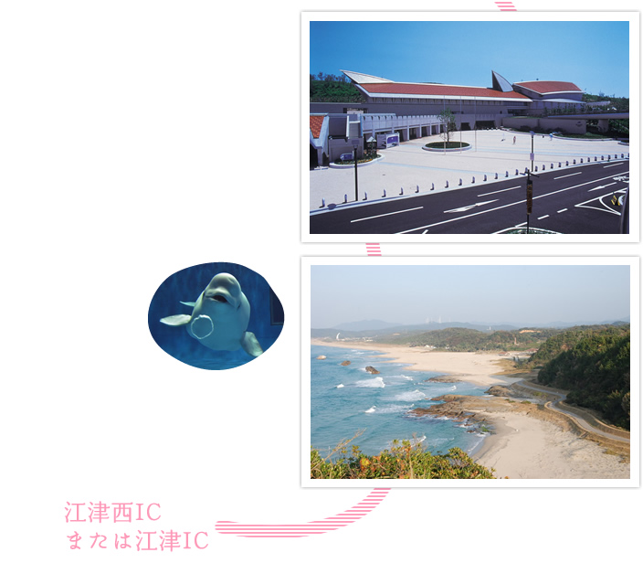 県立しまね海洋館アクアス。石見海浜公園。