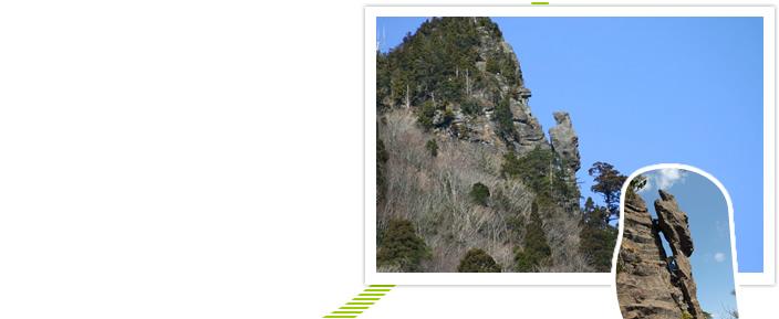 トカゲ岩・自然回帰の森