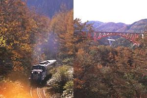 秋の木次線トロッコ列車