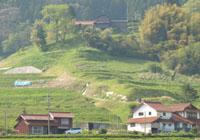 飯谷の風景