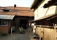 木村酒造の写真