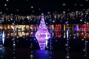 島根の冬の夜を彩るイルミネーション情報