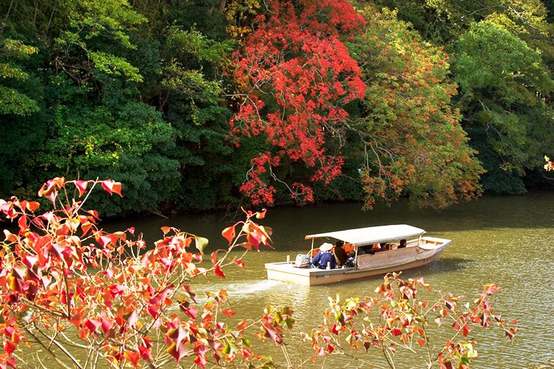 秋の堀川遊覧船