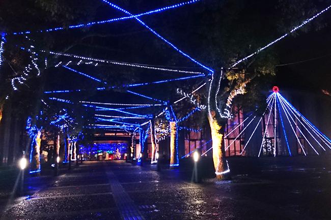 プラバ光の杜プロジェクト2017