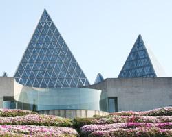 特典で入場料金が無料またわ割引になる島根県の観光施設