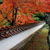 Youmeiji Temple