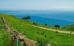 Mt. Akahage [Chiburi Island]