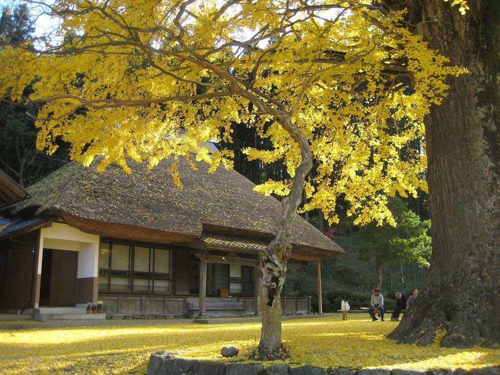 kingenji temple