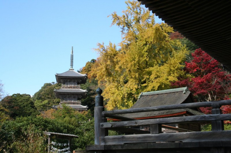 kiyomizu Temple autumncolor