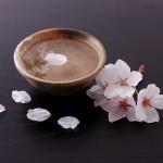 Birthplace of Japanese sake