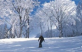 asahi tenguston snow