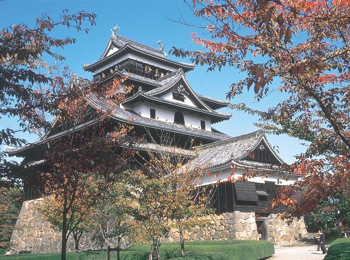 Matsue caslte autumn