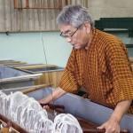 About Sekishu-Banshi