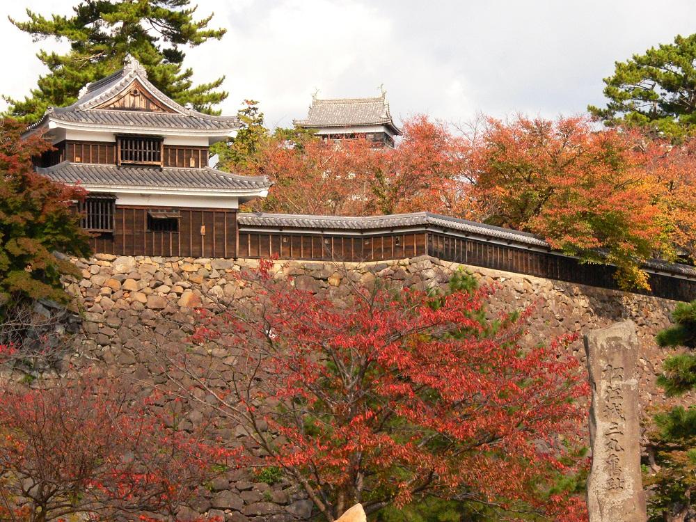 Matsue castle autumn