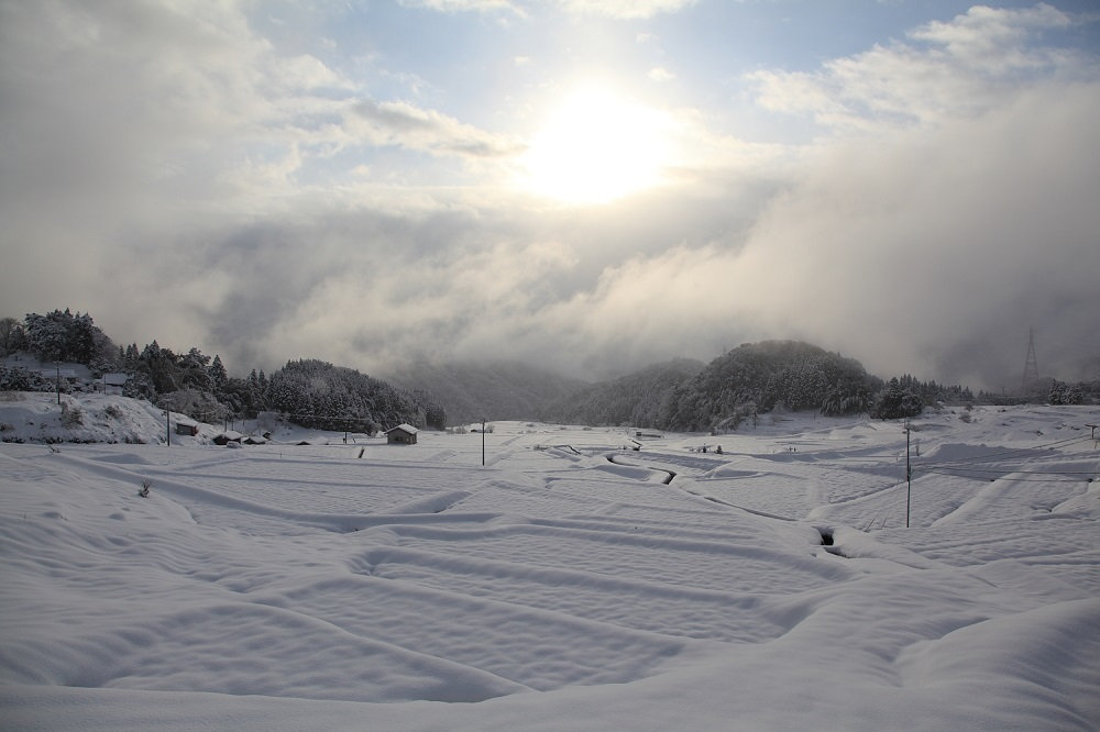 snow daito unnan