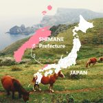 Our Instagram account is now open! 【@discover.shimane】