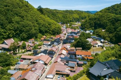 Omori Town from above
