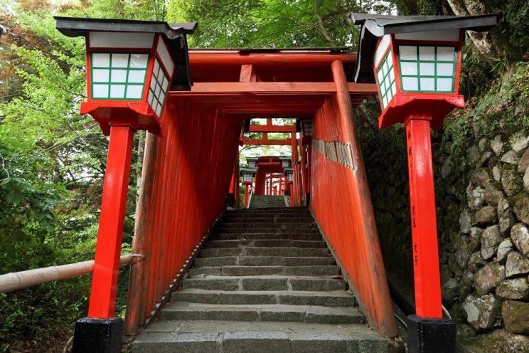Le chemin menant au sanctuaire et son tunnel de Torii