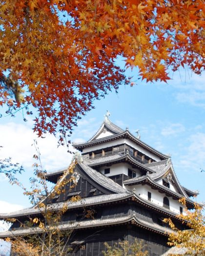 Matsue Castle in Autumn
