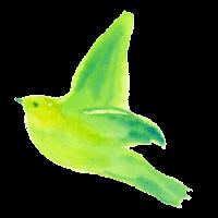 bird2-small