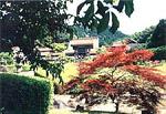 龍雲寺(浜田市)