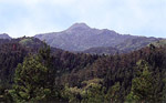 大満寺山(隠岐の島町)