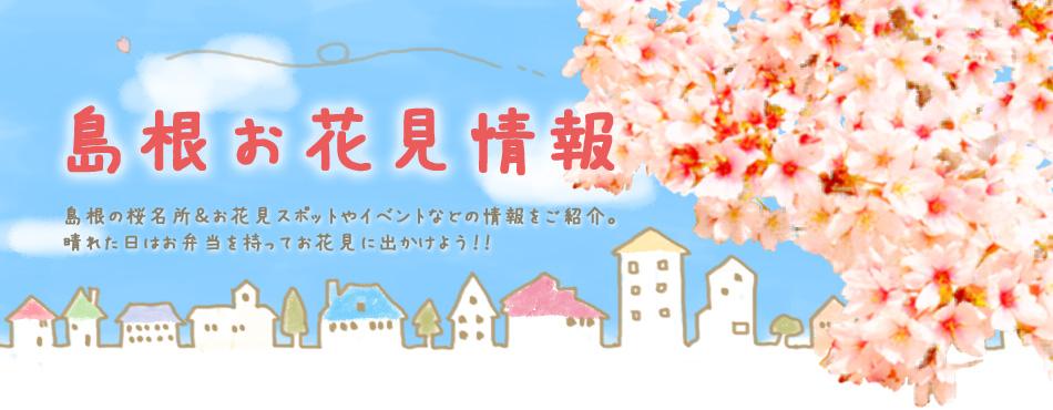 島根の桜名所&お花見スポット情報