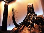 三瓶自然館サヒメル
