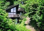 吉田グリーンシャワーの森