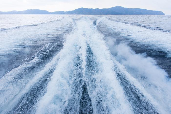 隠岐の船旅 内航船いそかぜ