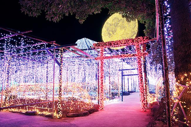 日本庭園 由志園 イルミネーション 黄金の島ジパング