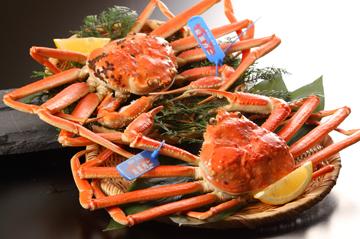冬のグルメ旅〜島根にカニを食べに行こう!