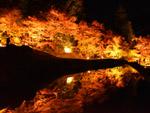酒谷光稲荷 紅葉ライトアップ(美郷町)