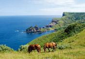 隠岐の島を満喫!現地ツアーでおすすめ観光地を巡ろう!