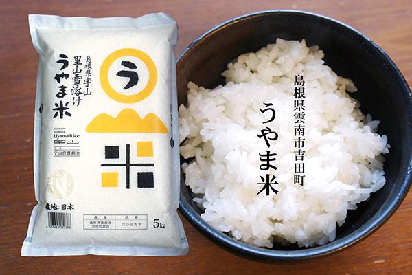 43_fujimotobeikoku
