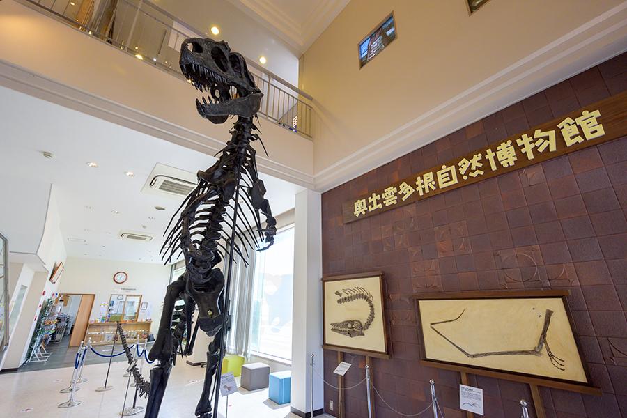 奥出雲多根自然博物館エントランス